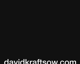 Davidkraftsow.com